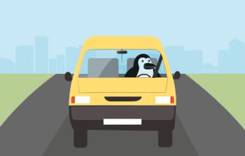 Percy Penguin drives away from the city in a car.